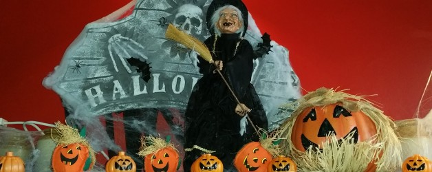 Halloween im Ursprungsland erleben 26.10. – 1.11.2019