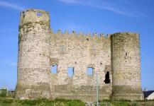 Die Burg in Carlow