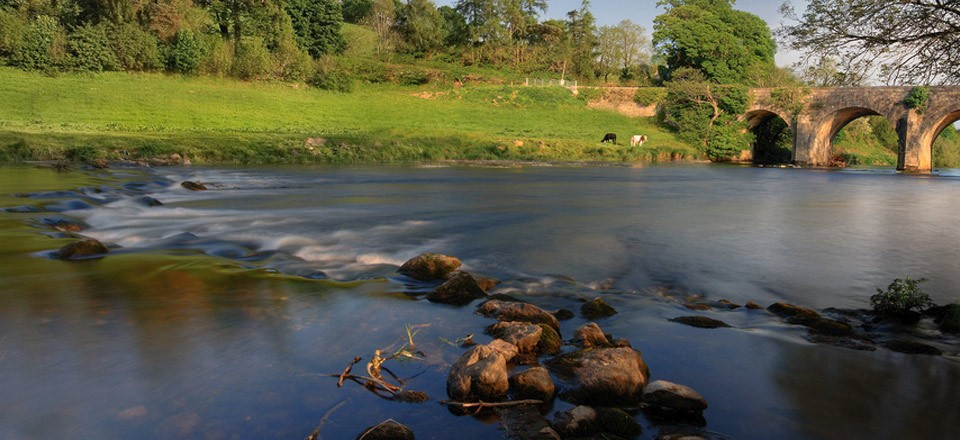 The Slaney River at Kildavin, County Carlow