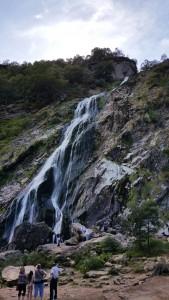 Wasserfall auf dem Gelaende von Powerscourt